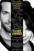 Silver Linings Playbook - 0