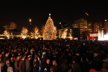 Cavalcade of Lights: Neighbourhoods