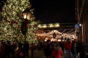 Holiday Lights: Distillery District