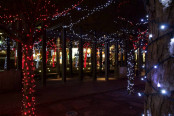 Holiday Lights: Yorkville