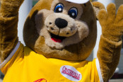 Beasley Bear Rides and Attractions page