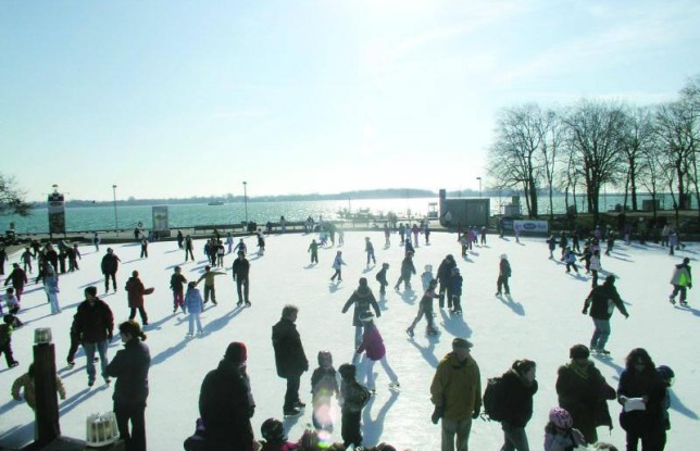Harbourfront Centre Rink