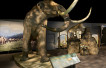 Mammoths and Mastadons at the Ontario Science Centre