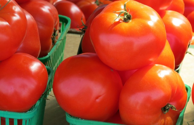 IMG_3913 tomatoes
