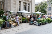 Club Monaco Farmers Market